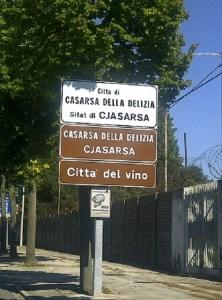 Casarsa della Delizia-20120801-02906