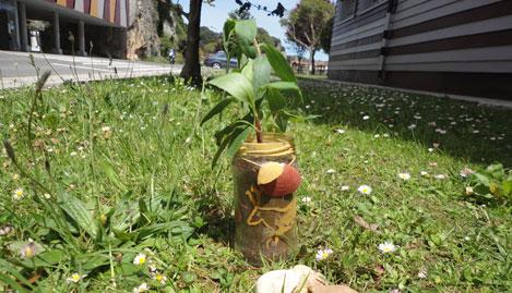 Día del Medio Ambiente en el Centro Tito Bustillo