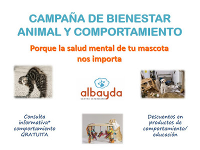 clinica veterinaria