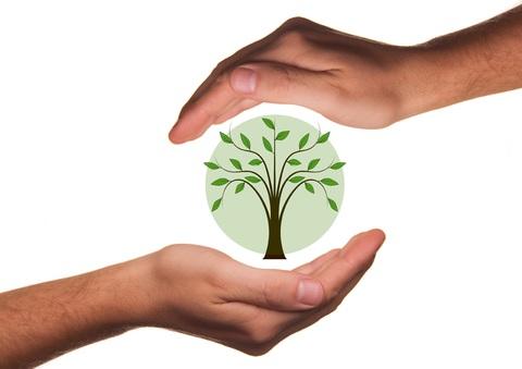 Wolontariat w ochronie środowiska