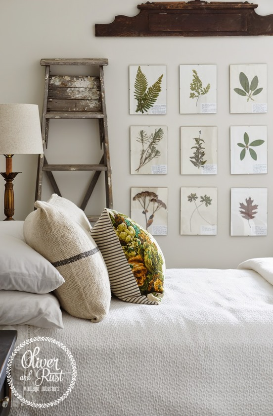symmetrical botanical art collection