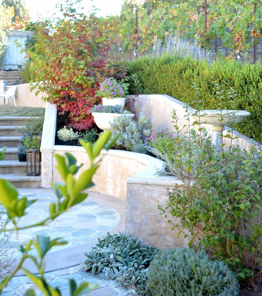 terraced yard and stairs