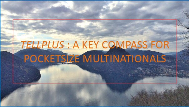 Pocketsize Multinationals