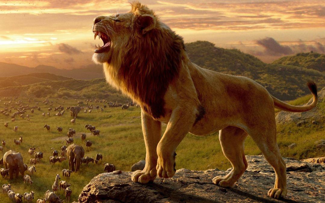 Il Re Leone: La Recensione