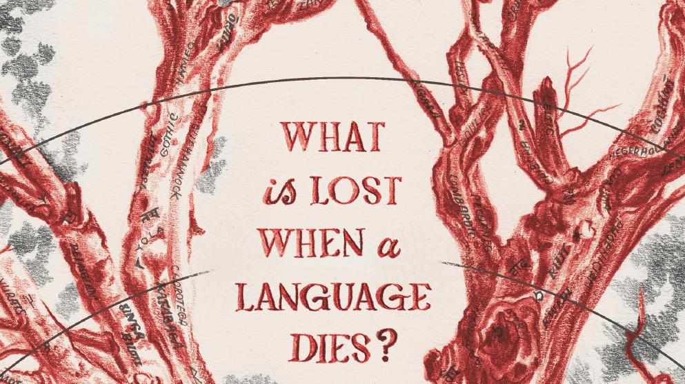Dialect: un gioco di linguisti per linguisti?