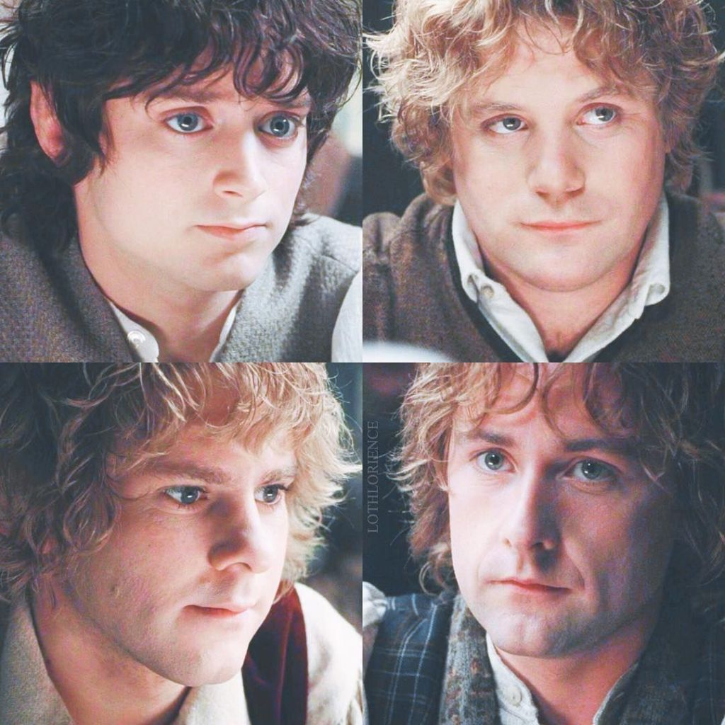 Risposte sulla nuova traduzione de Il Signore degli Anelli (e di Frodo, Sam, Merry e Pippin)