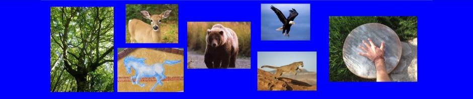 animaux 1
