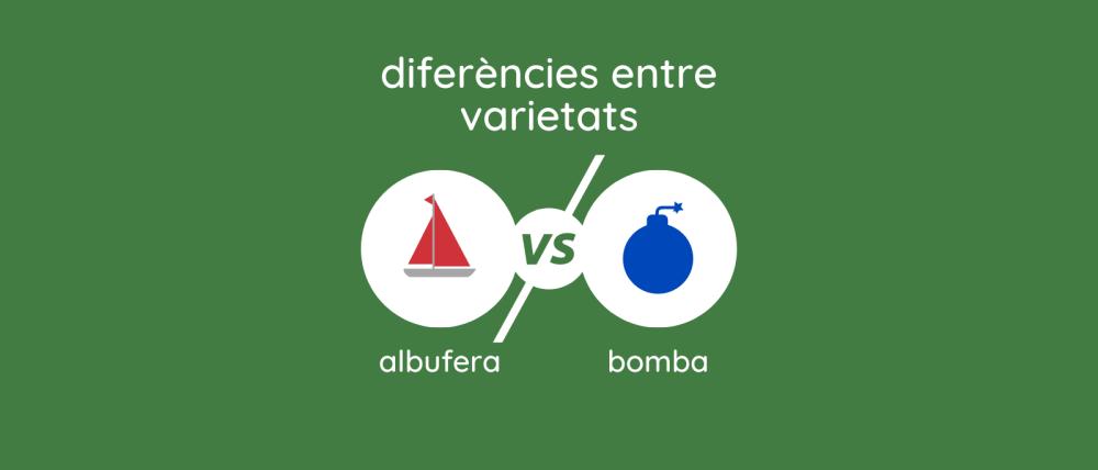 Albufera vs Bomba