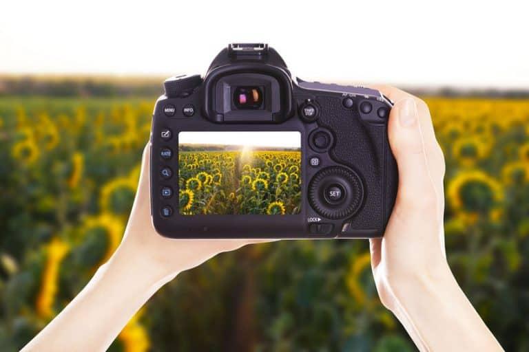 Display di una macchina fotografica