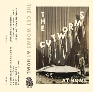 cut-worms-at-home