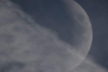 The Lovely Moon: Moonlight Drift