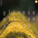 Just A Glimpse of William Spivey
