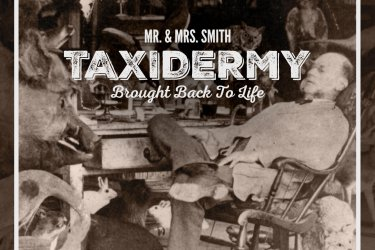 Mr. & Mrs. Smith's Taxidermy Resurrection
