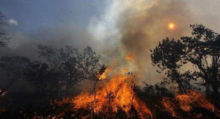 Cómo atacar los incendios forestales de forma segura