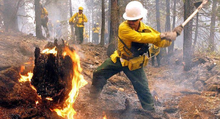 Cómo debe organizarse un equipo para el combate de incendios forestales