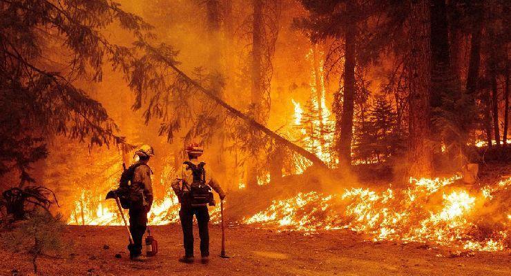 Las cinco etapas en el combate de incendios forestales