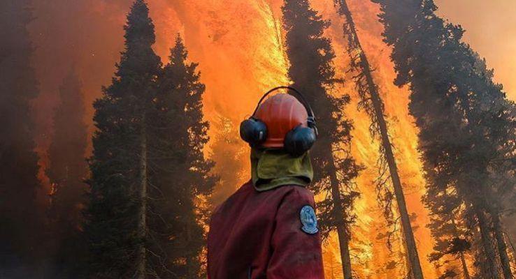 Guía para prevenir los riesgos en el combate de incendios forestales