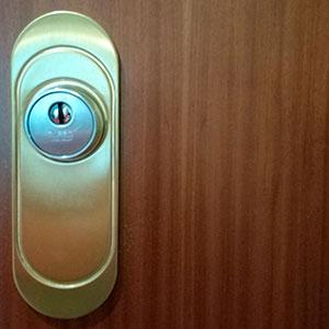 Escudos seguridad puertas Zaragoza