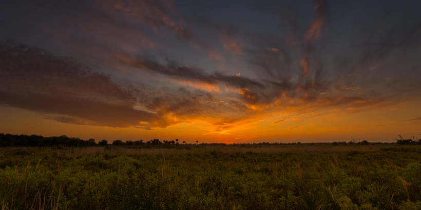 Kissimmee Prairie Preserve Photo