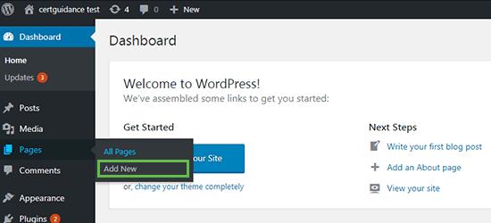 WordPress Post Menu Option