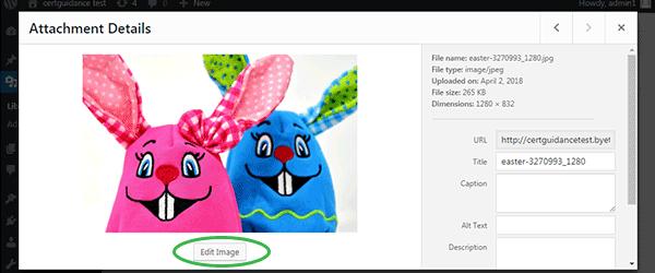 Edit Image Button of WordPress