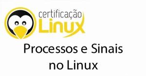 processos-e-sinais-no-linux Dicas do Certificação Linux