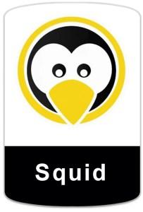 badge-linux-squid Curso de Proxy Squid