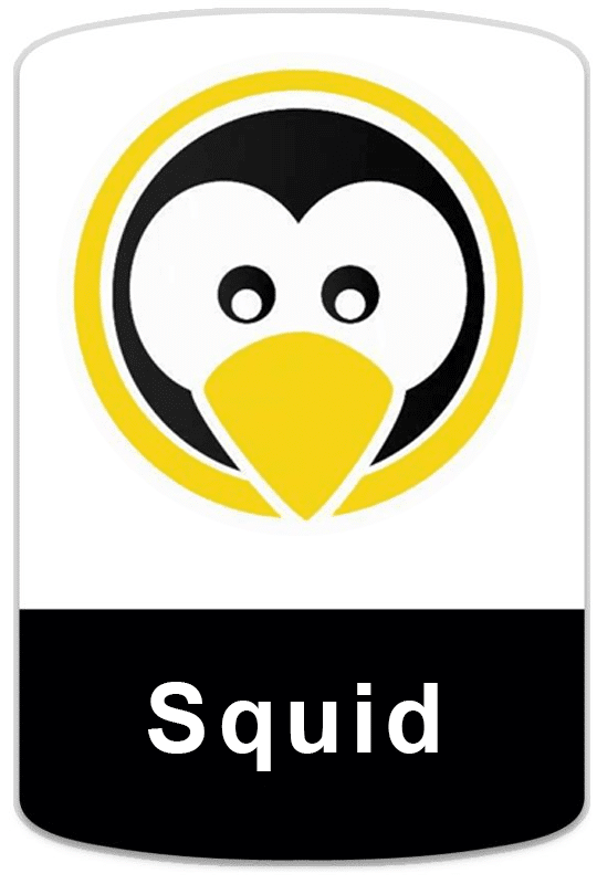 badge-linux-squid Cursos