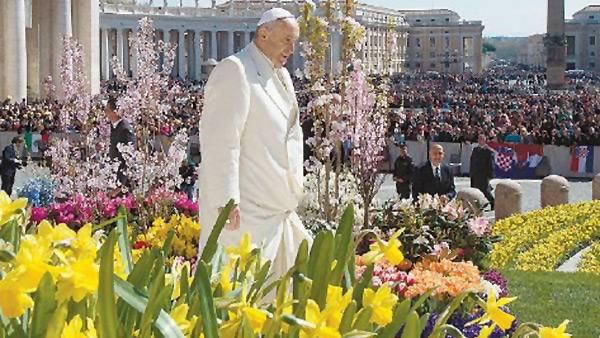 """Encíclica papal """"Laudato si"""""""
