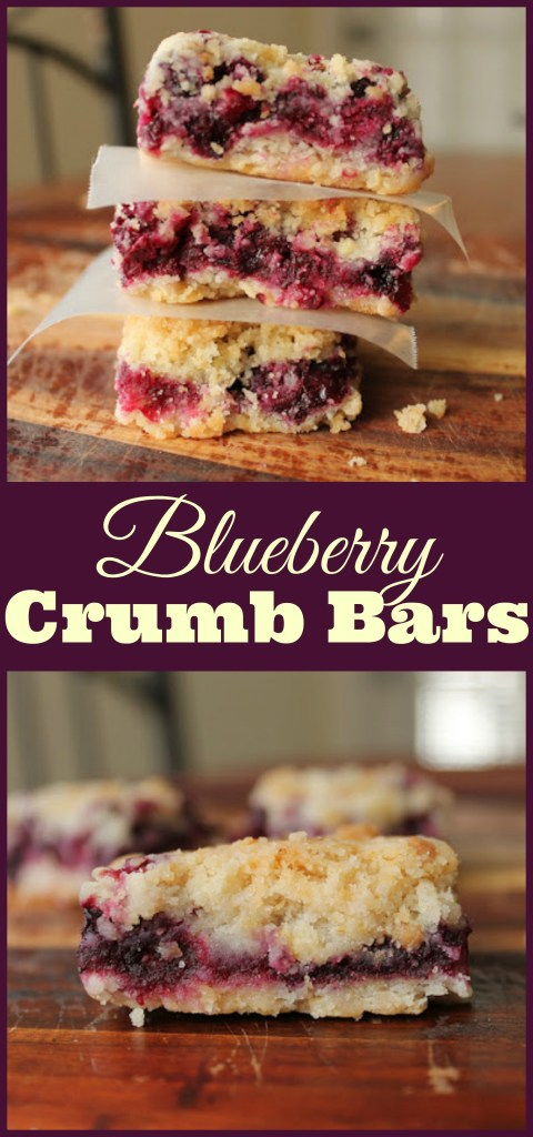 blueberry-crumb-bars