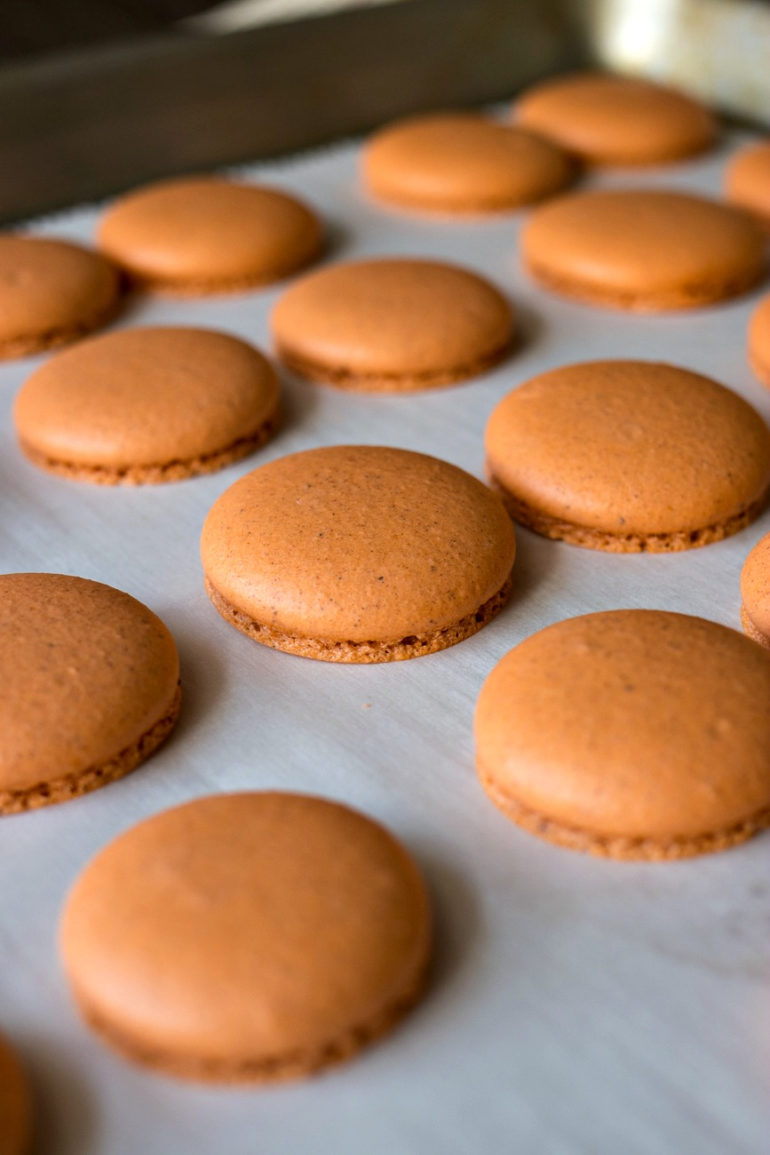 Sheet of Macaron cookies before being put together