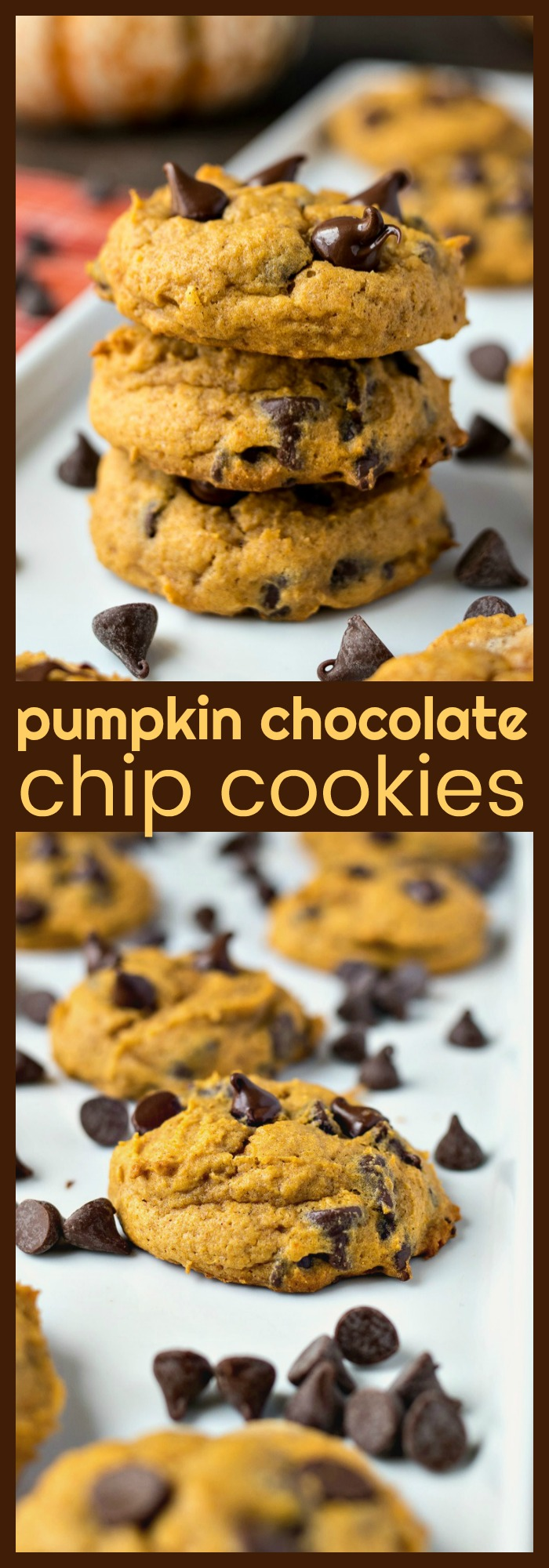 Pumpkin Chocolate Chip Cookies photo collage