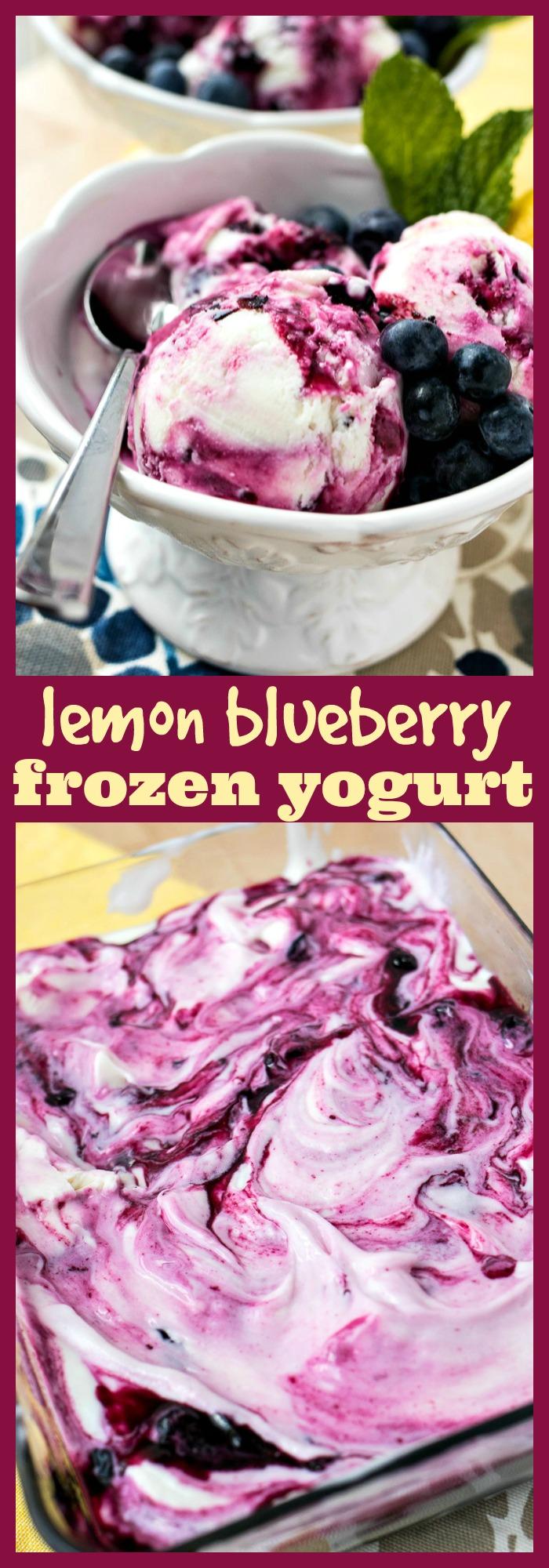 Lemon Blueberry Frozen Yogurt photo collage