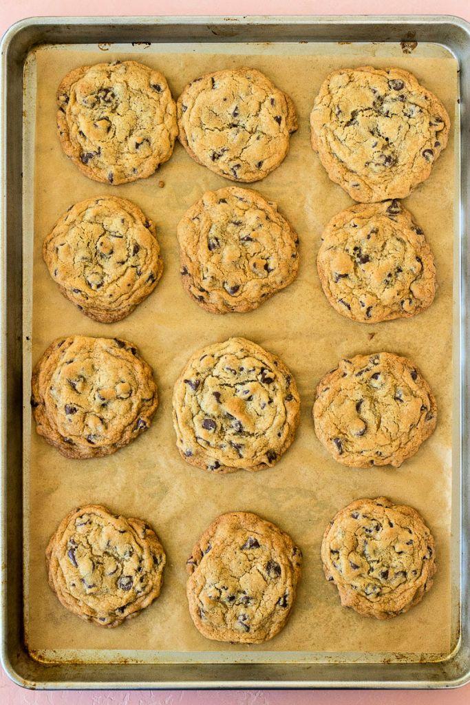 overhead shot of twelve chocolate chip cookies on a baking sheet
