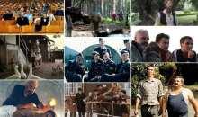 Filmy Jana Svěráka a Zdeňka Svěráka od Na samotě u lesa po Po strništi bos