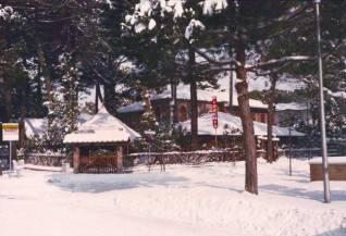 ristorante al caminetto neve milano marittima