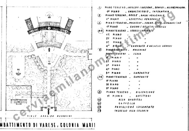 Colonia Varese: l'analisi del Conte