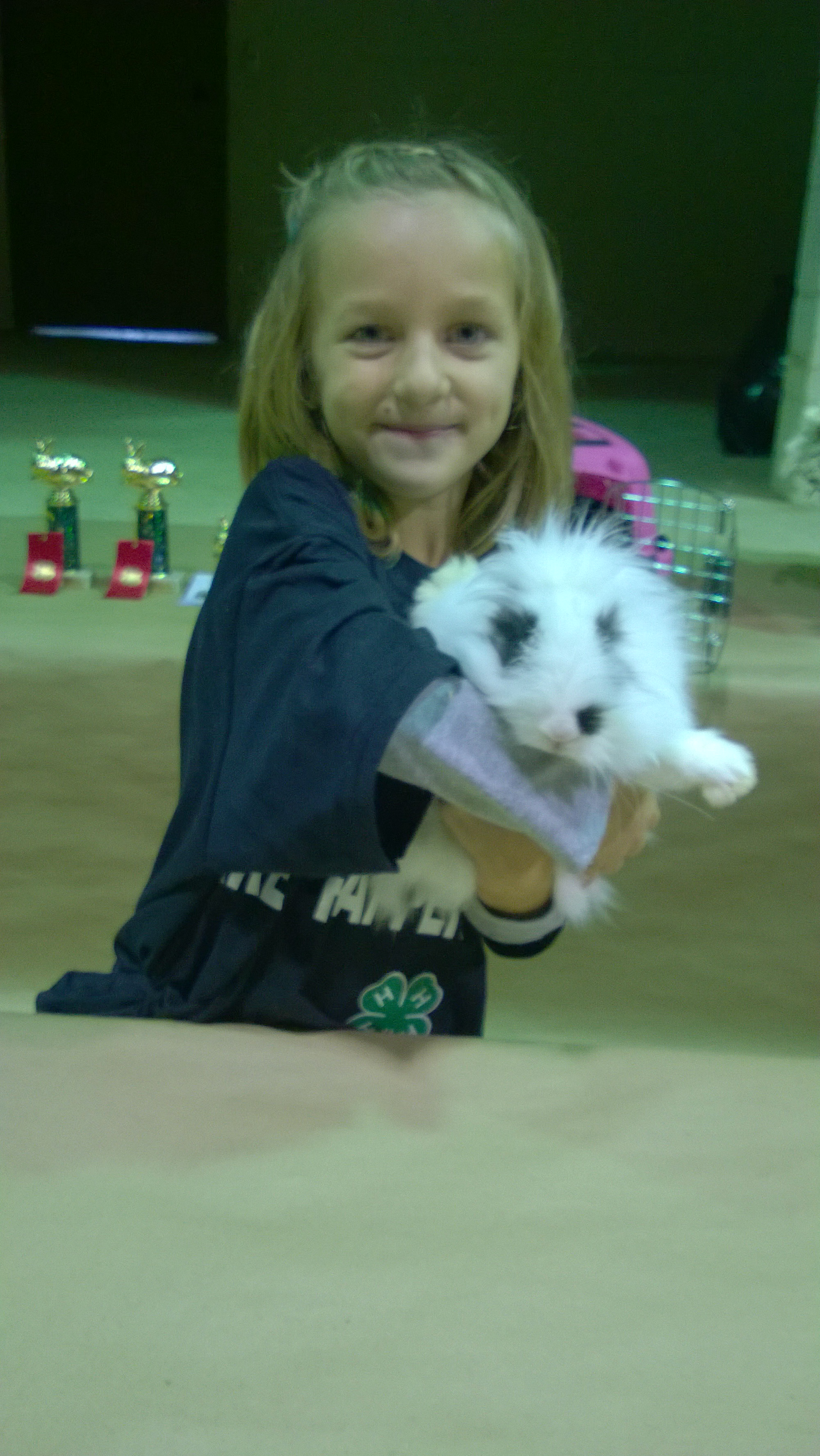 4 H Rabbit Club Gets Hopping For