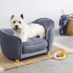 Aldi Releases Mini Sofa Beds For Dogs Cesar S Way
