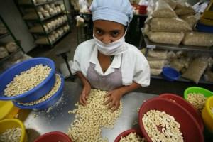 CESPPO Comercio Justo El Salvador _ (13)