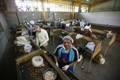 CESPPO Comercio Justo El Salvador _ (8)