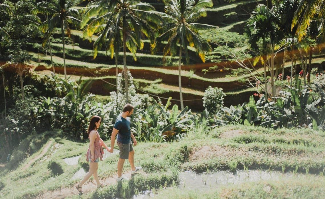 bali gezi rehberi Bali Gezi Rehberi Bali Tegalalang Pirin Tarlalar