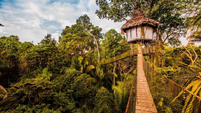 Treehouse Lodge, Iquitos, Peru dünyanın en sıradışı 10 oteli Dünyanın En Sıradışı 10 Oteli Treehouse Lodge Iquitos Peru 678x381