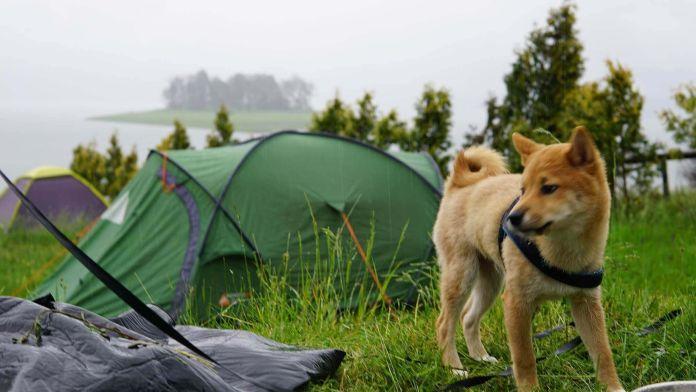 Bulgaristan Batak Gölü Yağmur Altında  Bulgaristan | Batak Gölü Gezi Rehberi Bulgaristan Batak G  l   Ya  mur Alt  nda