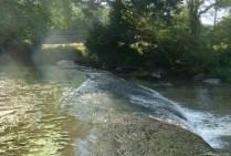 Au pont de Mallièvre, le 03 août 2012 à 09:30