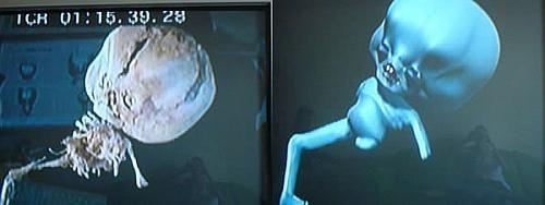 "Esclarecida a ""múmia ET"" de Uberaba"