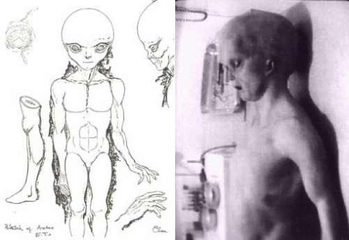 A Autópsia Alien