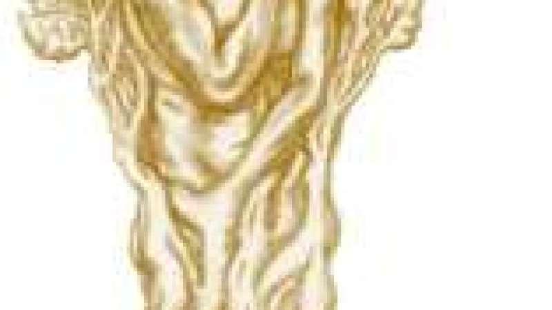 """Homem-árvore"": HPV"