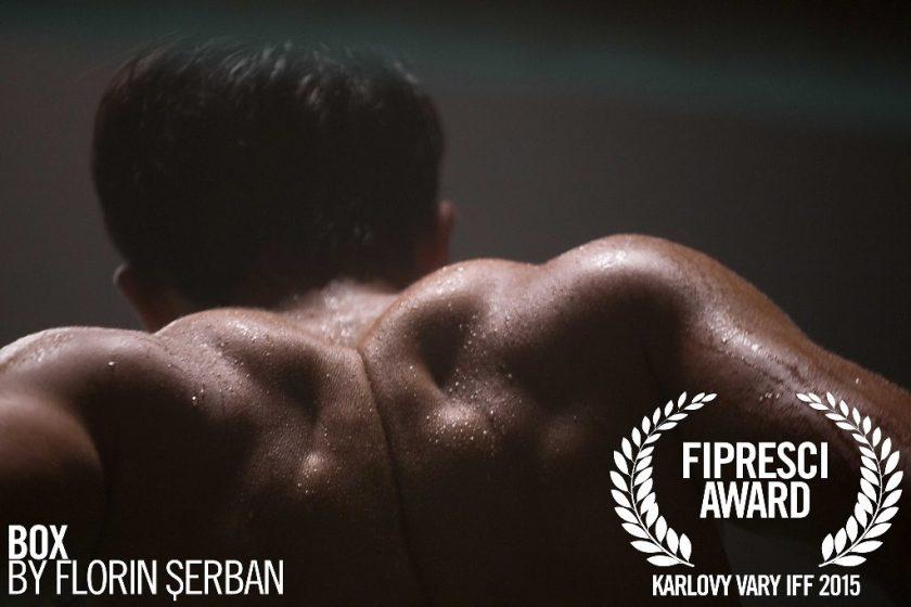 BOX-Florin-Serban-tiff15