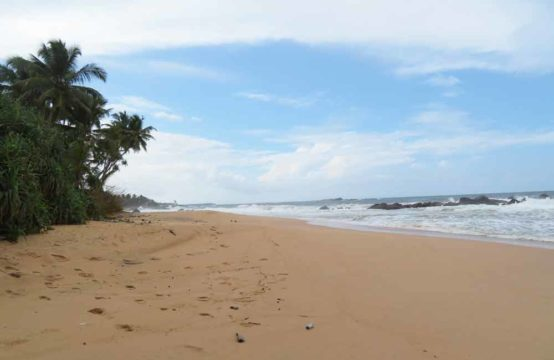 Ceylon Estate Agents Property Sales Letting Agents